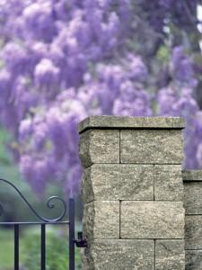 Ogrodzenie-Antara II paloma lamany
