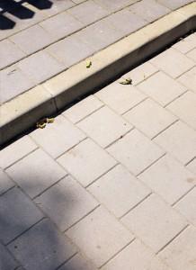 Kraweznik drogowy 15 szary gladki Plyta chodnikowa szary gladki
